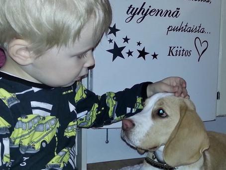 Lapsen ja koiran ystävyydestä