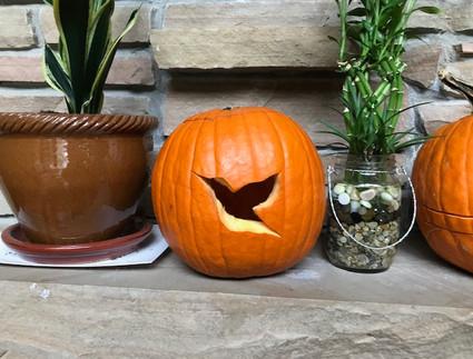 pumpkinCA.jpg