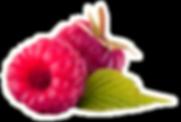 Two Raspberries_edited_edited.png