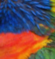 Berührungscoaching für Paare / Federn