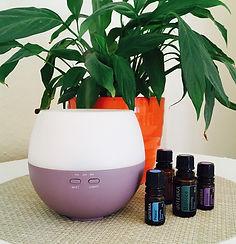 doTerra Duftöl Aromatherapie Lavendel Entspannung kuscheln Duft