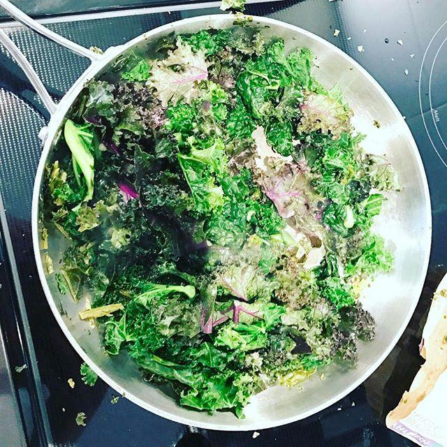 Steamed kale oxalates, Oxalic acid digestion optimization