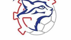 Découvrez les sections sportives Handball à Mulhouse