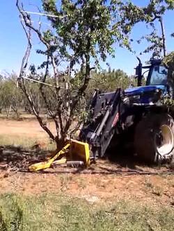 Tree Puller