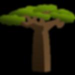 DéWarrior baobab tree