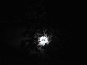 Oktober Fullmåne