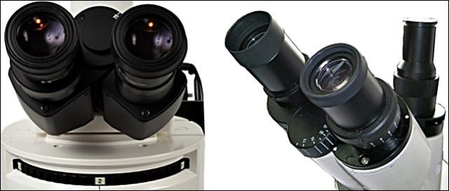 microscopios_oculares.jpg