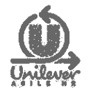 Grey Unilever Logo.png