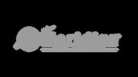 Grey Medirian logo .png