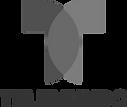 Grey Telemundo logo.png