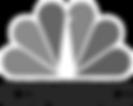 Grey CNBC Logo.png