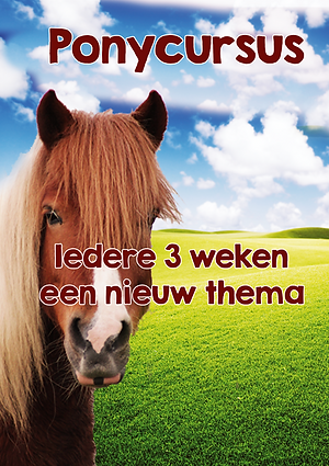 Ponycursus a3.png