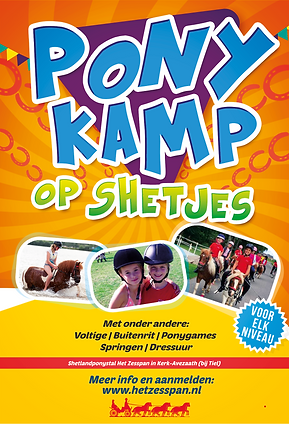 Poster klein.png