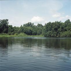 Marsh 1