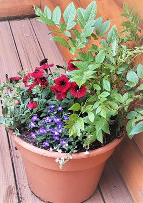 """16"""" Spring Mixed Pot Large"""