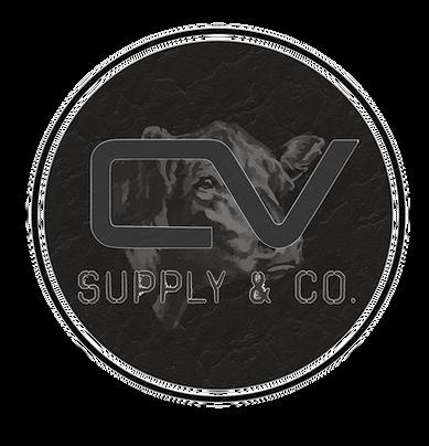 CV Logo Mock up 1.png