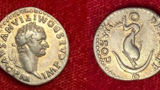 Domitian AR Denarius 81 CE (Group 3)                         RIC 26