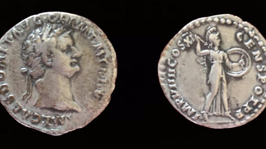 Domitian AR Denarius 85 CE         (5th Issue)