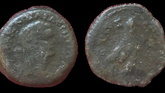 Domitian Diobol Ex: Dattari