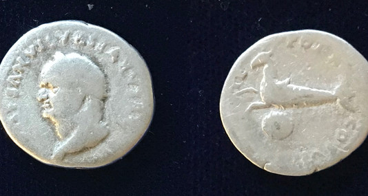Vespasian AR Denarius 79-24 June