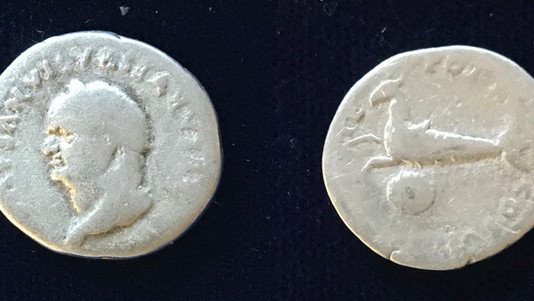 Vespasian AR Denarius 79-24 June