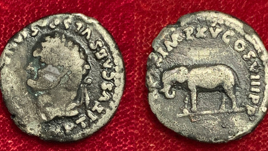 Titus AR Denarius 80 CE                                                       RIC 116