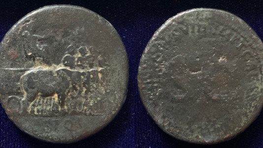 My first Flavian Sestertius