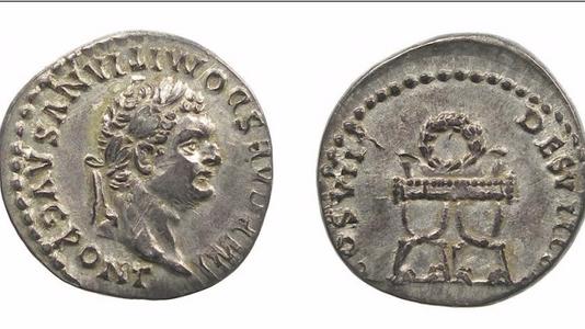 Domitian AR Denarius 81CE      (Group 3)