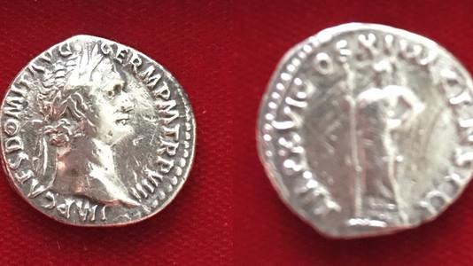 Domitian AR Denarius 88 CE        (First Issue)