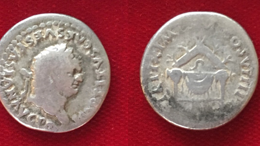 Titus AR Denarius 80 CE        January 1-June 30