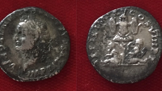 Titus AR Denarius 80 CE (January 1-June 30)