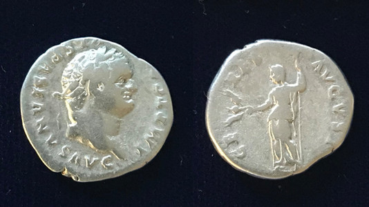 Titus AR Denarius 79 CE               June 24-July 1