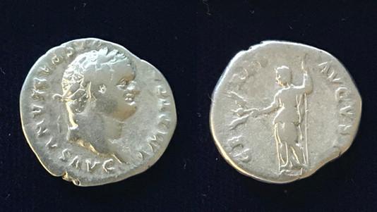 Titus AR Denarius 79 CE               June 24-July 1