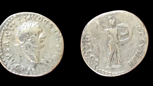 Domitian AR Denarius 81 CE    (Group 3)