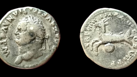 Titus AR Denarius 79 CE after July 1