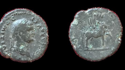 Domitian Limes Denarius 76 CE
