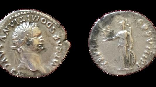 Domitian AR Denarius 82 CE        First Issue