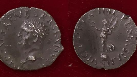 Vespasian AR Denarius 69-70 CE                                    RIC 1340