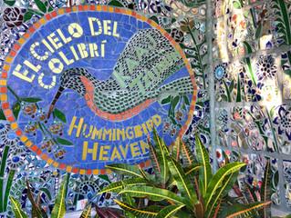 New Classes in Antigua Guatemala