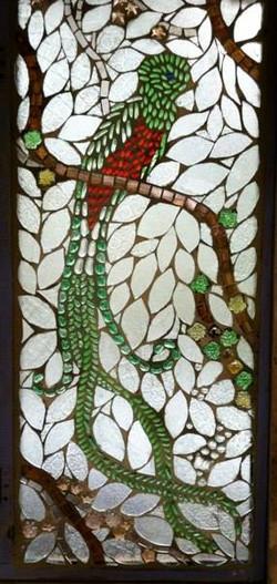 Facebook - Quetzal--National Bird and symbol of Guatemala.jpg