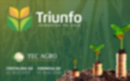 REVISTAIRRIGO-triunfo-pub_site-ed06-800x