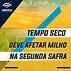 Milho 2ª safra já enfrenta problemas com tempo seco no centro-sul do Brasil, diz AgRural