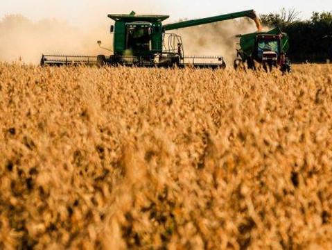 Apesar do excesso de chuvas, produção de soja em Goiás tem previsão de alta na safra 20/21