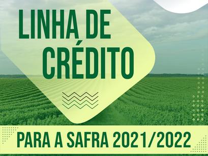Bancos registram aumento da linha de crédito para produtores rurais durante a safra 2021/2022