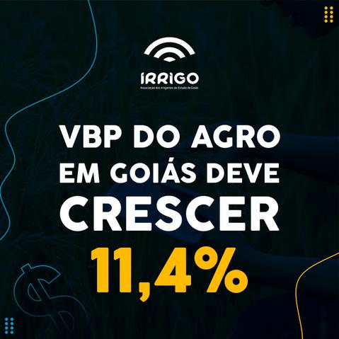 VBP da Agropecuária em Goiás deve crescer 11,4% em 2021