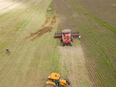Excesso de chuva prejudica colheita de soja na região de Cristalina
