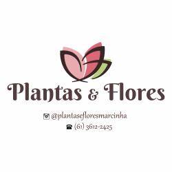 Plantas & Flores