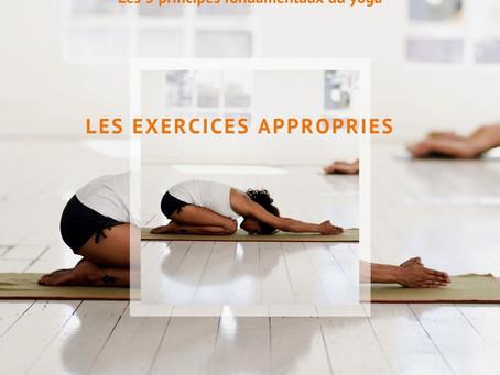 Le premier des 5 principes fondamentaux du yoga : asanas ou exercices appropriés