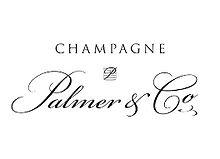 Champagne Palmer_web_edited.jpg