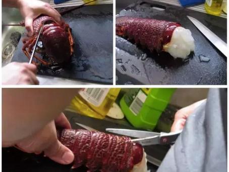龍蝦清洗處理